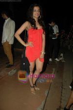 at Shakir Shaik_s bday bash in Madh on 22nd Dec 2010 (71).JPG