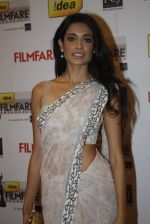 at 57th Idea Filmfare Awards 2011 on 29th Jan 2012 (15).jpg