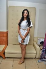 at the launch of 2 night in Soul valley music in Mumbai on 14th Dec 2012 (23).JPG