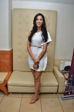 at the launch of 2 night in Soul valley music in Mumbai on 14th Dec 2012 (24).JPG