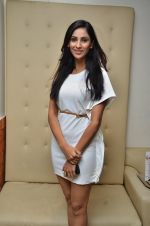 at the launch of 2 night in Soul valley music in Mumbai on 14th Dec 2012 (25).JPG