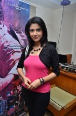 at the launch of 2 night in Soul valley music in Mumbai on 14th Dec 2012 (32).JPG