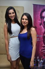 at the launch of 2 night in Soul valley music in Mumbai on 14th Dec 2012 (36).JPG