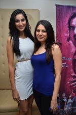 at the launch of 2 night in Soul valley music in Mumbai on 14th Dec 2012 (37).JPG