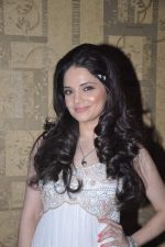 Armeena Rana Khan at Music Launch of Huff Its Too Much in Bandra, Mumbai on 9th Oct 2013 (28).JPG