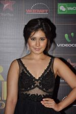 at The Renault Star Guild Awards Ceremony in NSCI, Mumbai on 16th Jan 2014(416)_52d8dbed40b0d.JPG