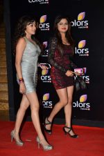 Tina Dutta, Vividha Kirti at Colors red carpet in Grand Hyatt, Mumbai on 1st March 2014 (309)_5312fd22a4f3b.JPG