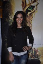 VJ Ramona Arena at Kamal Saldanah_s roar film launch in Mumbai on 31st July 2014 (104)_53db8e2fc953a.JPG