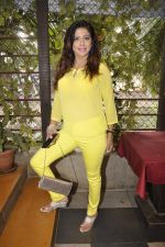 Tina Ghai_s event for new years in Juhu, Mumbai on 23rd Dec 2014 (10)_549a8ee52beac.JPG