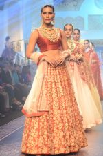 Model walk the ramp for Shyamal bhumika Grand Finale Show at IIJW 2015 on 6th Aug 2015 (87)_55c4634f71d20.JPG