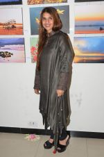 Fatema Agarkar at art exhibition on 25th Nov 2015 (14)_5656b3d5e2a2a.JPG
