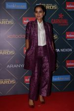 Tillotama Shome At Reel Movies Award 2018 on 20th March 2018 (9)_5ab1f89638328.JPG