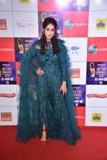 at Zee cine awards red carpet on 19th March 2019 (249)_5c91e83e15bb3.jpg